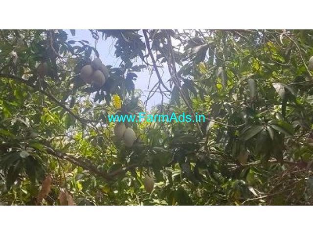 29.50 Acre Farm Land for Sale Near Kuvathur