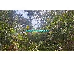 29.50 Acre Farm Land for Sale Near Kuvathur