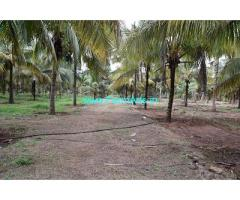 5.10 Acre Farm Land for Sale Near Pollachi