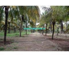 5.10 Acre Farm Land for Sale Near Pollachi