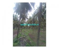 120 Acre Farm Land for Sale Near Pollachi