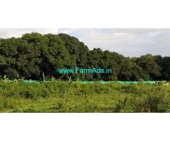 2.5 Acre Farm Land for Sale Near Bodinayakanur