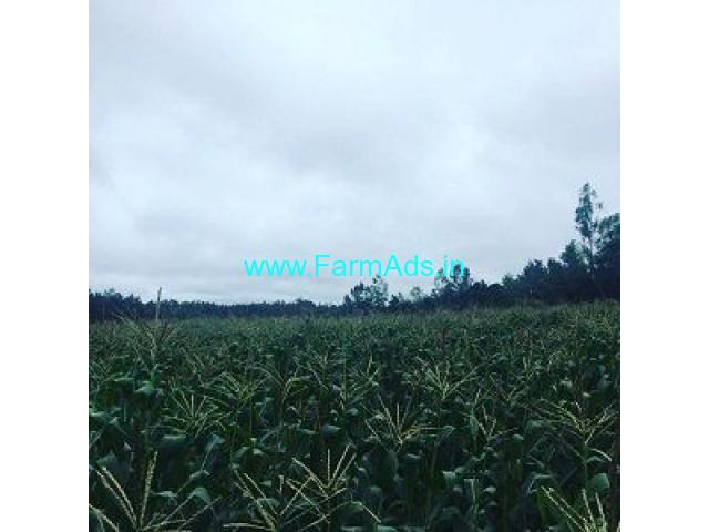 4 Acre Farm Land for Sale Near Belur,Sakleshpur Road