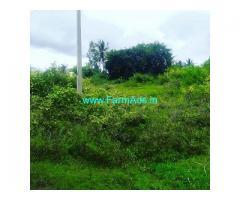 3.5 Gunta Farm Land for Sale Near Chikmagalur,Kuruvangi road