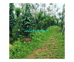 2 Acre Coffee Land for Sale Near Mudigere