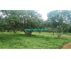 14 Acres Mango, Coconut Farm for sale at Vibuthikere, Ramanagara.