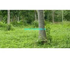 6 acres Coconut farm for sale at laxmipura, Ramanagara,
