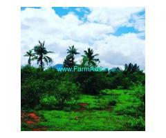 21 Acre Farm Land for Sale Near Chikmagalur,Kadur Road