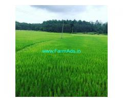 4.5 Acre Farm Land for Sale Near Sakleshpur