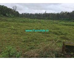 1.24 Acre Farm Land for Sale Near Mudigere