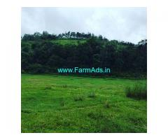 4.5 Acre Farm Land for Sale Near Sakleshpur
