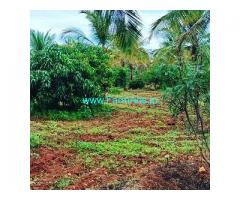 7 Acre Coffee Land for Sale Near Chikmagalur,Kadur Road