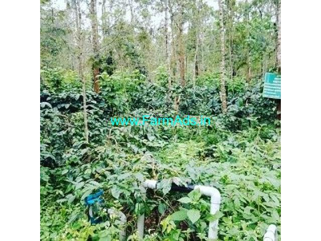 6 Acre Coffee Land for Sale Near Magge,Alur