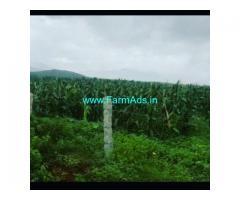 11 Acre Farm Land for Sale Near Sakarayapatna