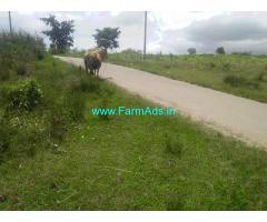 3 Acre Farm Land for Sale Near Chikmagalur