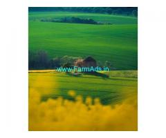 30 Acre Farm Land for Sale Near Chikmagalur