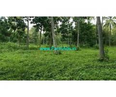 6 Acre Farm Land for Sale Near Ramanagara