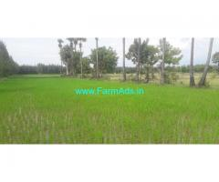 1.75 Acres punjai farm land for sale with well Free EB at Utthiramerrur.