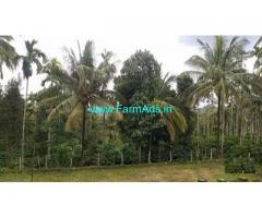 10 Acre Coffee Land for Sale Near Meppadi