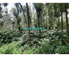 5 Acre Coffee Land for Sale Near Kalpetta