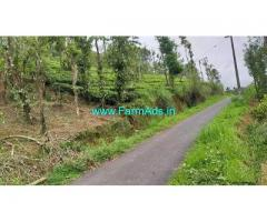 2.5 Acre Coffee Land for Sale Near Varayal
