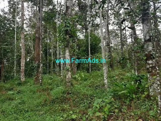 8.5 Acre Farm Land for Sale Near Mananthavady