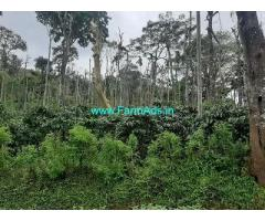 10 Acre Farm Land for Sale Near Kalpetta