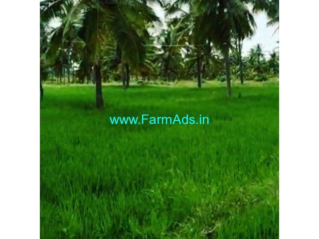 30 Acre Farm Land for Sale Near Chikmagalur