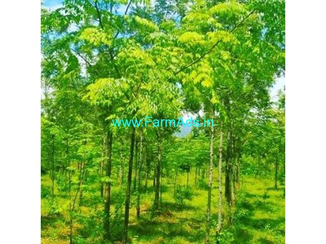 4.13 Acre Farm Land for Sale Near Chikmagalur