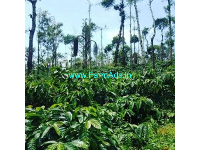 50 Acre Coffee Land for Sale Near Chikmagalur