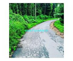 1.5 Acre Coffee Land for Sale Near Chikmagalur