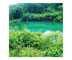 17 Acre Coffee Land for Sale Near Hassan