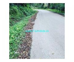 9.5 Acre Coffee Land for Sale Near Chikmagalur