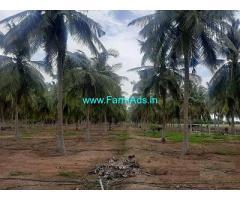 9 Acre Farm Land for Sale Near Gudimangalam