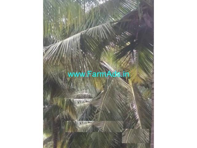 6 Acre Farm Land for Sale Near Gudimangalam