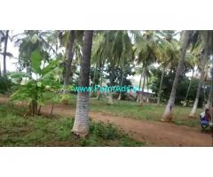 12 acres Coconut Arecanut plantation for sale Near Gudihalli, Hiriyur