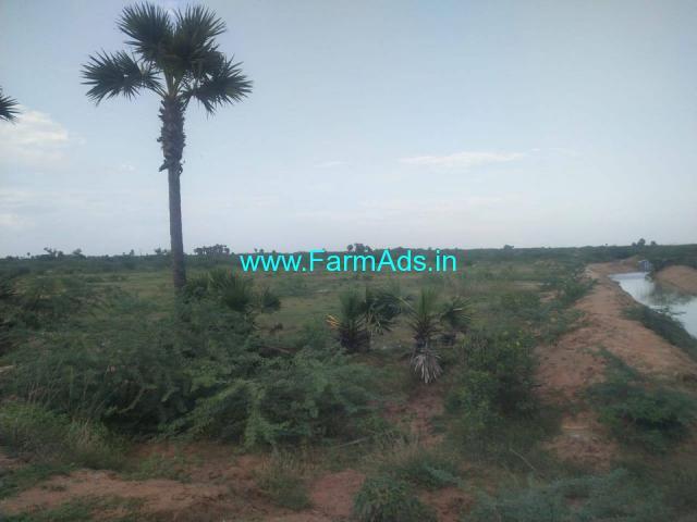 Agri Land at Low Cost  for sale Near kariyapatti