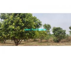 18 Acers agriculture. Mango farm lands for sale in yadadri bhonigir
