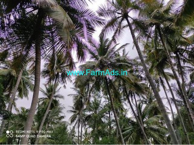 1 Acre Farm Land for Sale Near Periyakulam