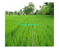 3 Acre Farm Land for Sale Near Jupudi