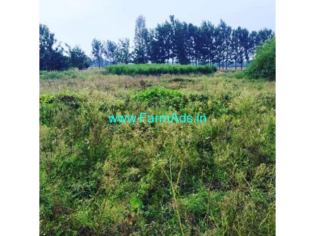 60 Gunta Agriculture Land for Sale Near Chikmagalur