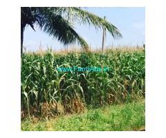 3 acres Farm land for sale in Doddballapura,52 Kms from Majestic