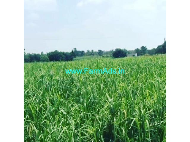 2 acres farm land for sale in Doddballapura, 53 Kms from Majestic