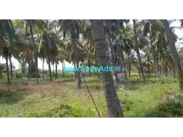18 Acres Coconut Grove for sale at Aaluru, Near Hiriyur.