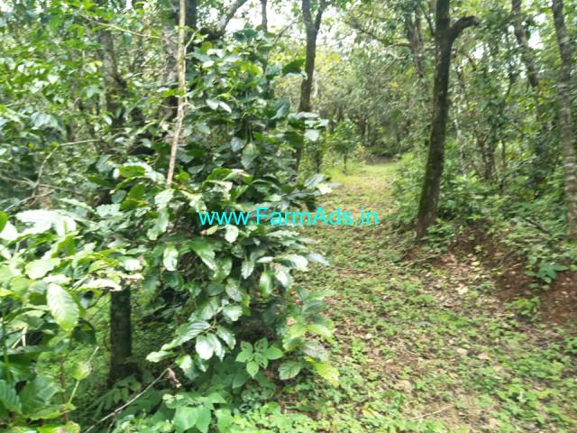 5.5 Acre Coffee Estate for sale near Saklehspura.