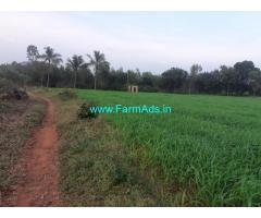 2 Agriculture Land for Sale at Rampura village,  Doddabelavangala