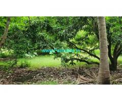 75 Acres Mango Farm Land for sale at Madurantakam Chengalpattu