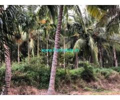 10.5 acres of coconut farm for sale near pollachi
