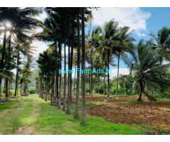 10 acres well maintained coconut Planataion for sale in Attappadi