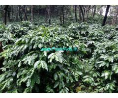 140 Acres Coffee Estate for sale at Sakleshpura.